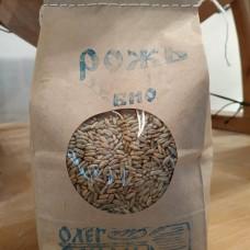 Зерно рожь, БИО, 1 кг.