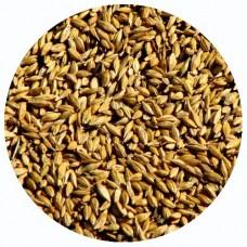 Каша пшеничная БИО, 30 кг.