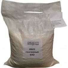 Зерно овес голозерный, БИО, 5 кг.