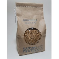 Зерно пшеница, БИО, 1 кг.