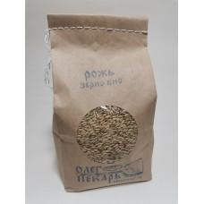 Зерно рожь, БИО, 1 кг. Шугуровское органическое